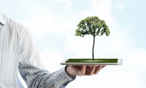 Human hand holding tablet pc with green tree on it